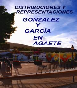 DISTRIBUCIONES Y REPRESENTACIONES GONZALEZ Y GARCÍA