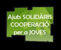 Realitza un Voluntariat solidari
