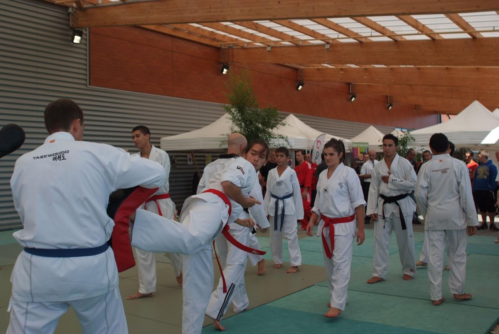 club taekwondo avignon