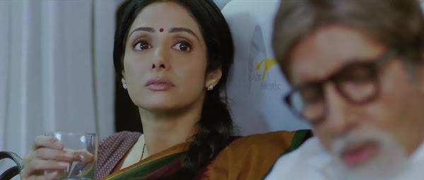 Screen Shot Of Hindi Movie English Vinglish (2012) Download And Watch Online Free at worldfree4u.com