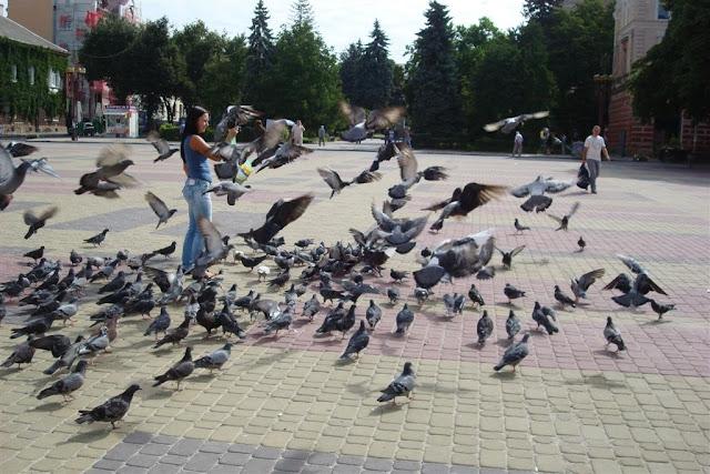 Feeding Pigeons, Ternopil, Theatre Square, Western Ukraine