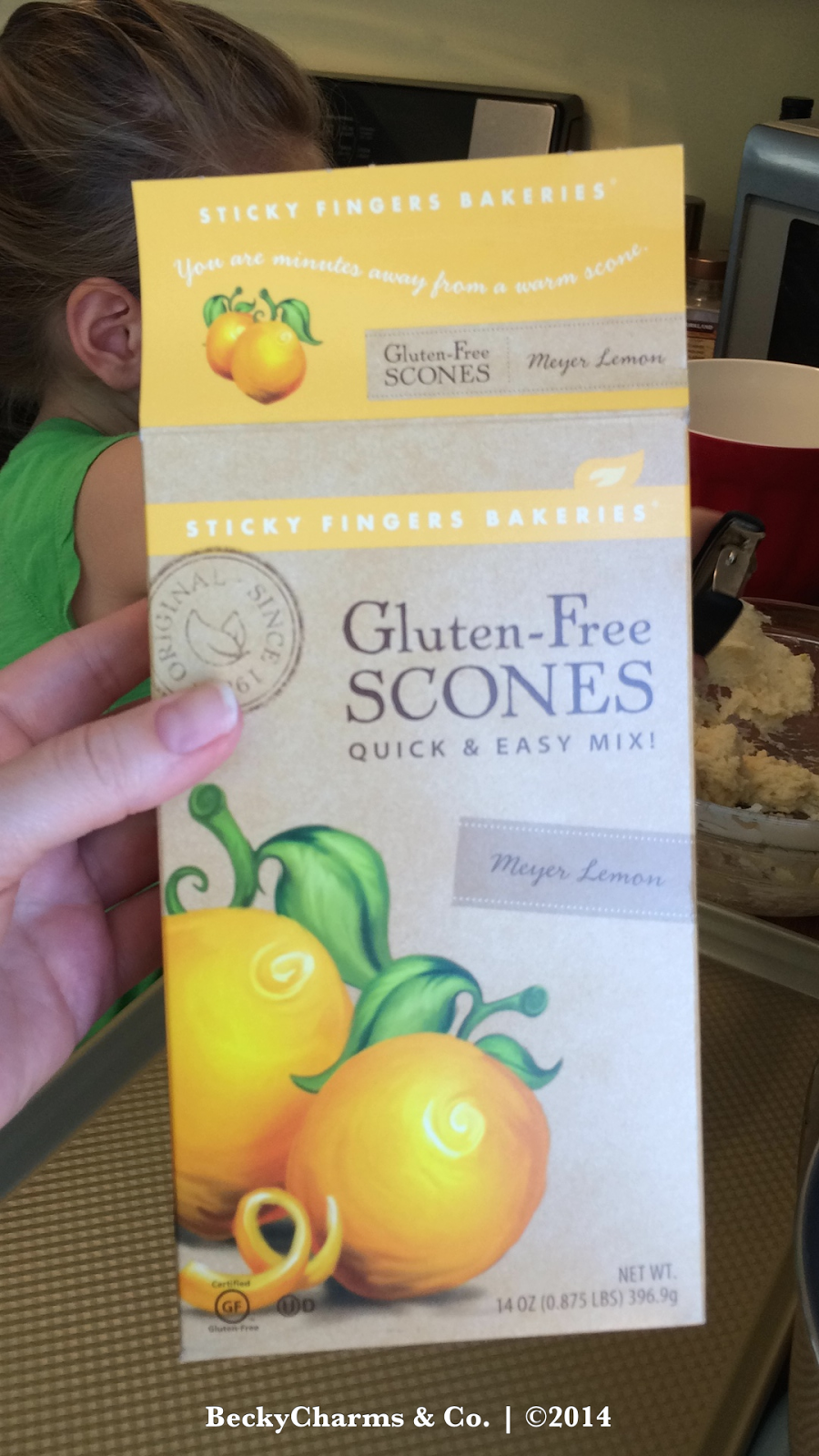 Mini Gluten Free Meyer Lemon Scones with TinyBaker 2014 by BeckyCharms