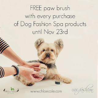 Free paw brush. Visit Chloe Cole Pet Couture