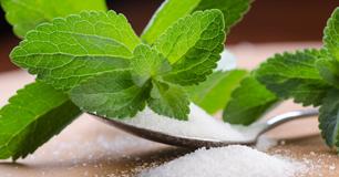 agen gula stevia