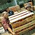 Kader dan Simpatisan PKS Jakarta Bantu Petani Stabilkan Harga Tomat
