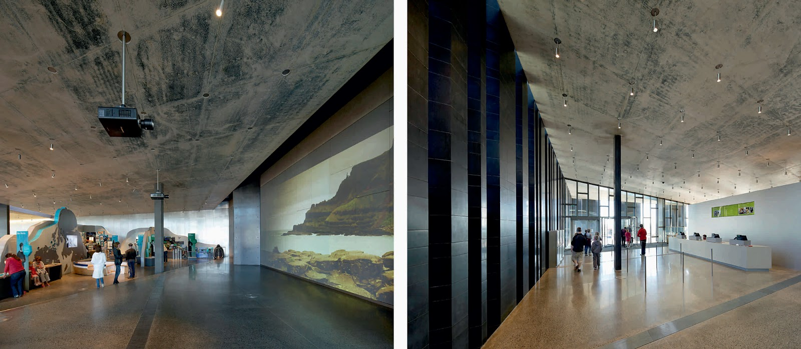 Giant S Causeway Visitor Centre By Heneghan Peng