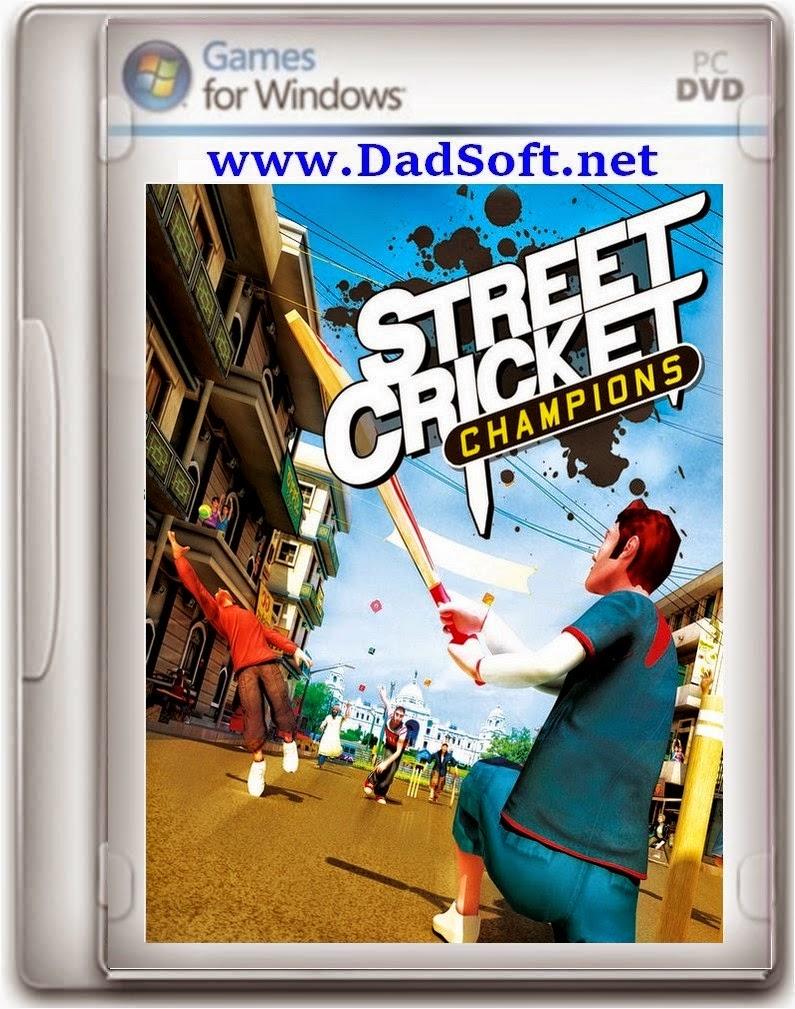 Street Cricket 2010
