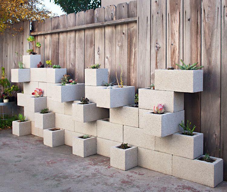 حائط النباتات لحديقة البيت