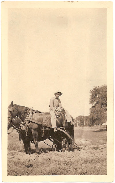 from the collection of Bill Bean unidentified man resting while plowing field with team of  horses