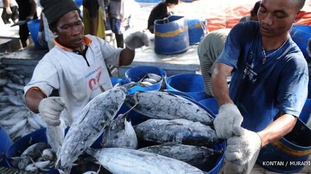 Hasil Laut Indonesia Dicuri Asing  1 Juta Ton Pertahun