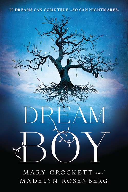 Dream Boy by Mary Crockett and Madelyn Rosenberg