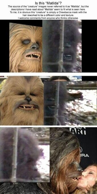 Matilda Chewbacca Comparison