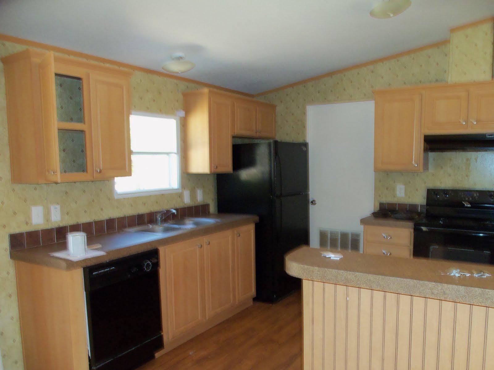 Mobile home makeover original interior pics for Painting a mobile home interior