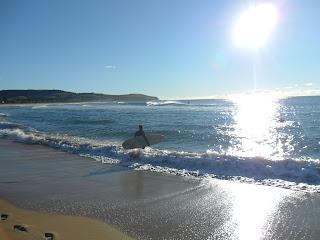 Image of surfer at Werri Beach Gerringong