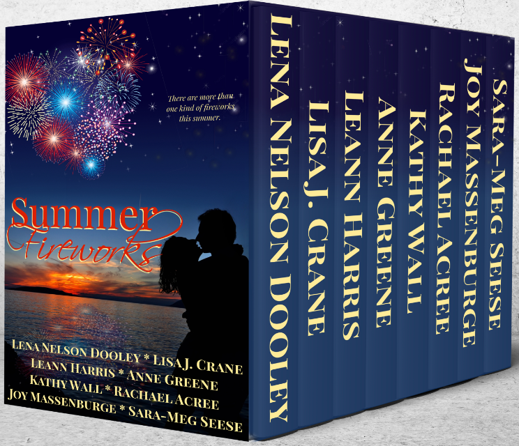9 Book Summer Novella Collection