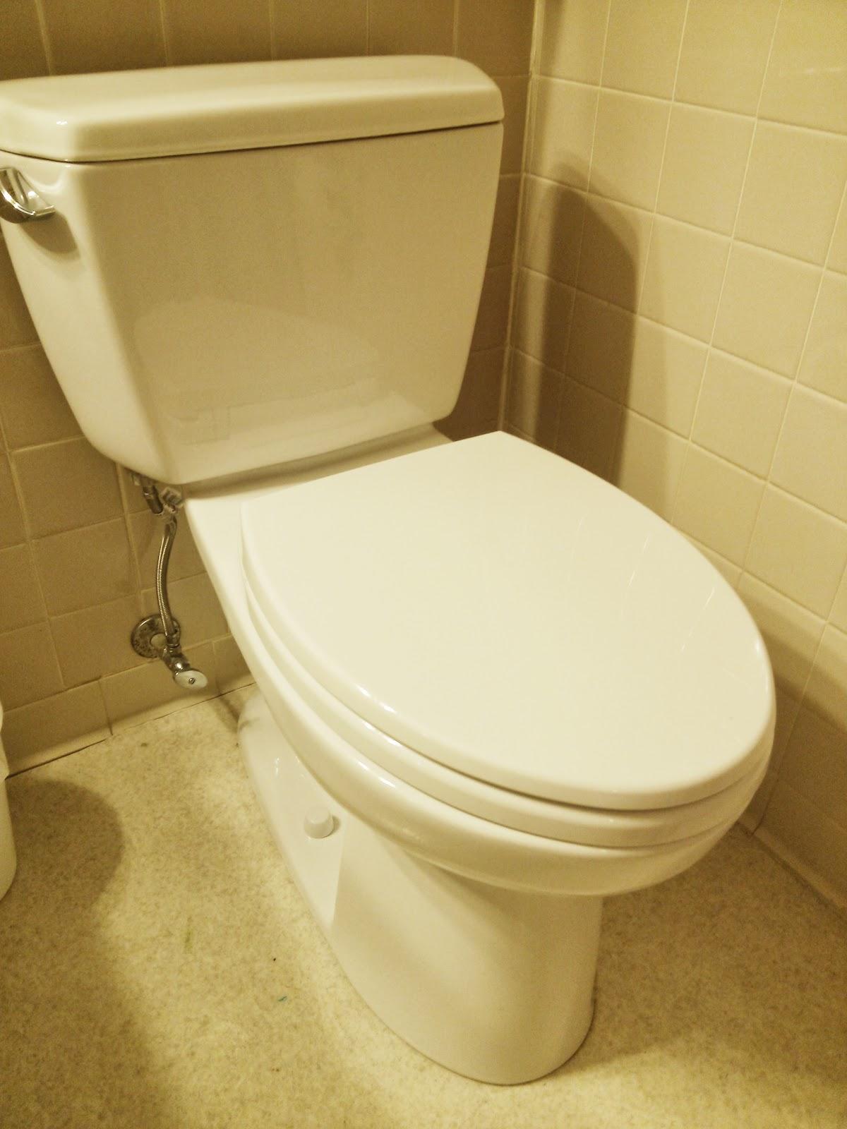 Bamboo Elongated Toilet Seat.Toilet Seat Elongated Bamboo Stylish ...