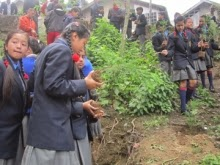 Darjeeling  Kalimpong marks World Environment Day