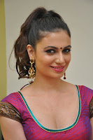 Simran Kaur in a Deep Neck Blouse Choli and Saree at Potugadu Movie Launc