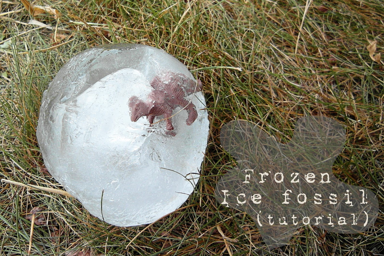 Fossil ice rocks sisters what