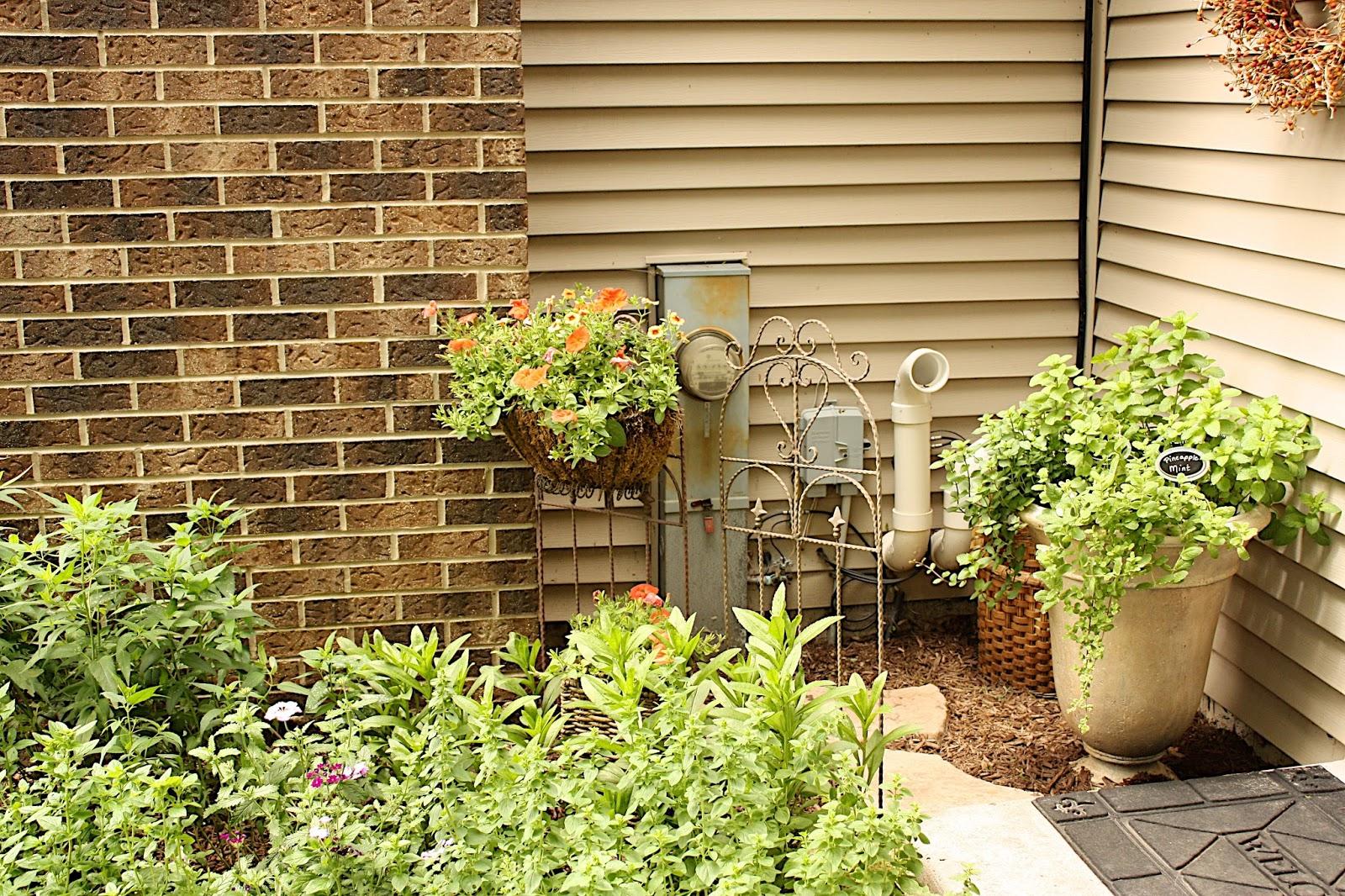 The Edgy Gardener Blog: Garden Walk: Rockford, IL (Post 2)