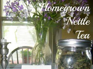 Homegrown Nettle Tea