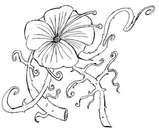 A Desenhar Girassol e flor    colorir