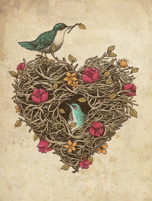 Birds Of Venice