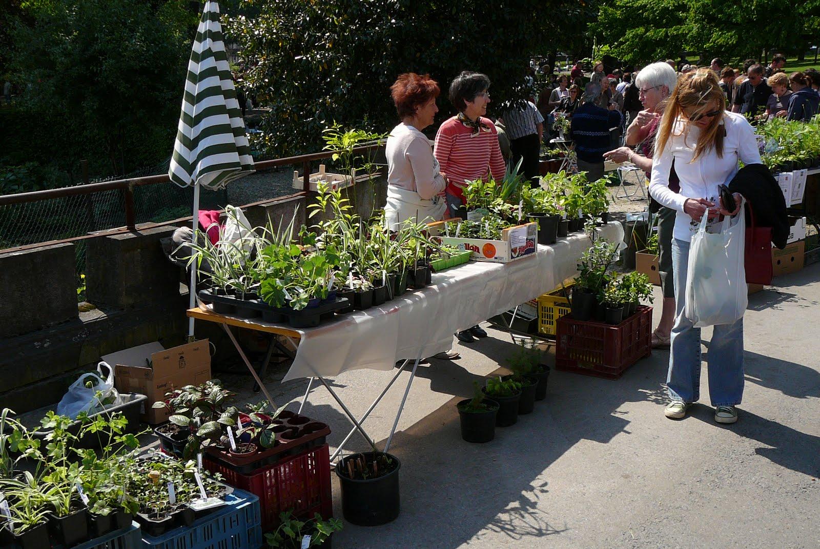 Les jardins du laveu bourse aux plantes du 1er mai for Jardin aux plantes