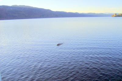 foto 2012 monstruo lago ness nessie