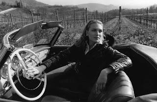 e' tempo di soave versus lungo la strada del vino soave