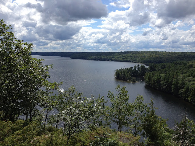 view from the top [bon echo]