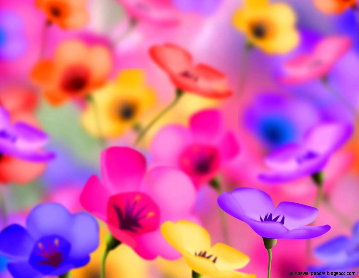 Download Desktop Gallery Windows Colorful Flowers Desktop