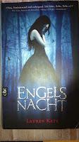 http://www.lenasbuecherwelt.blogspot.de/2014/02/rezension-lauren-kate-engelsnacht.html