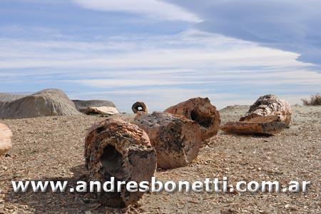 Bosque Petrificado José Ormachea - Sarmiento - Petrified Forest - Patagonia - Andrés Bonetti