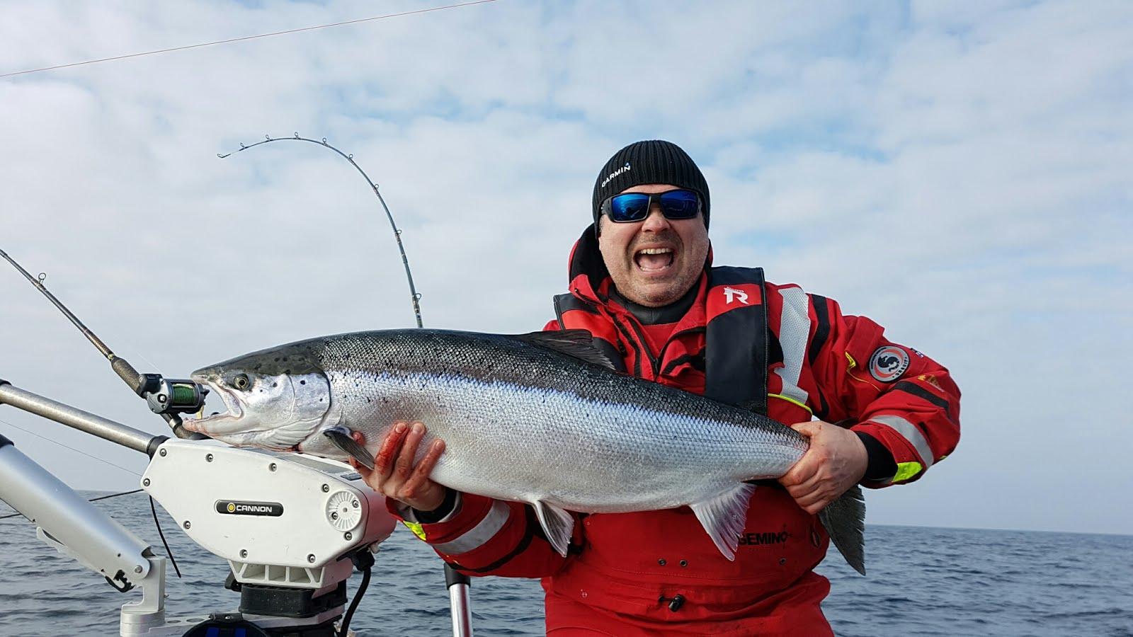 Östersjö laks 11,3 kg