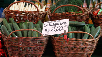 Organic Cucumbers from Spain
