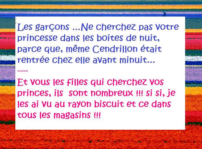 Garcon cherche fille pdf