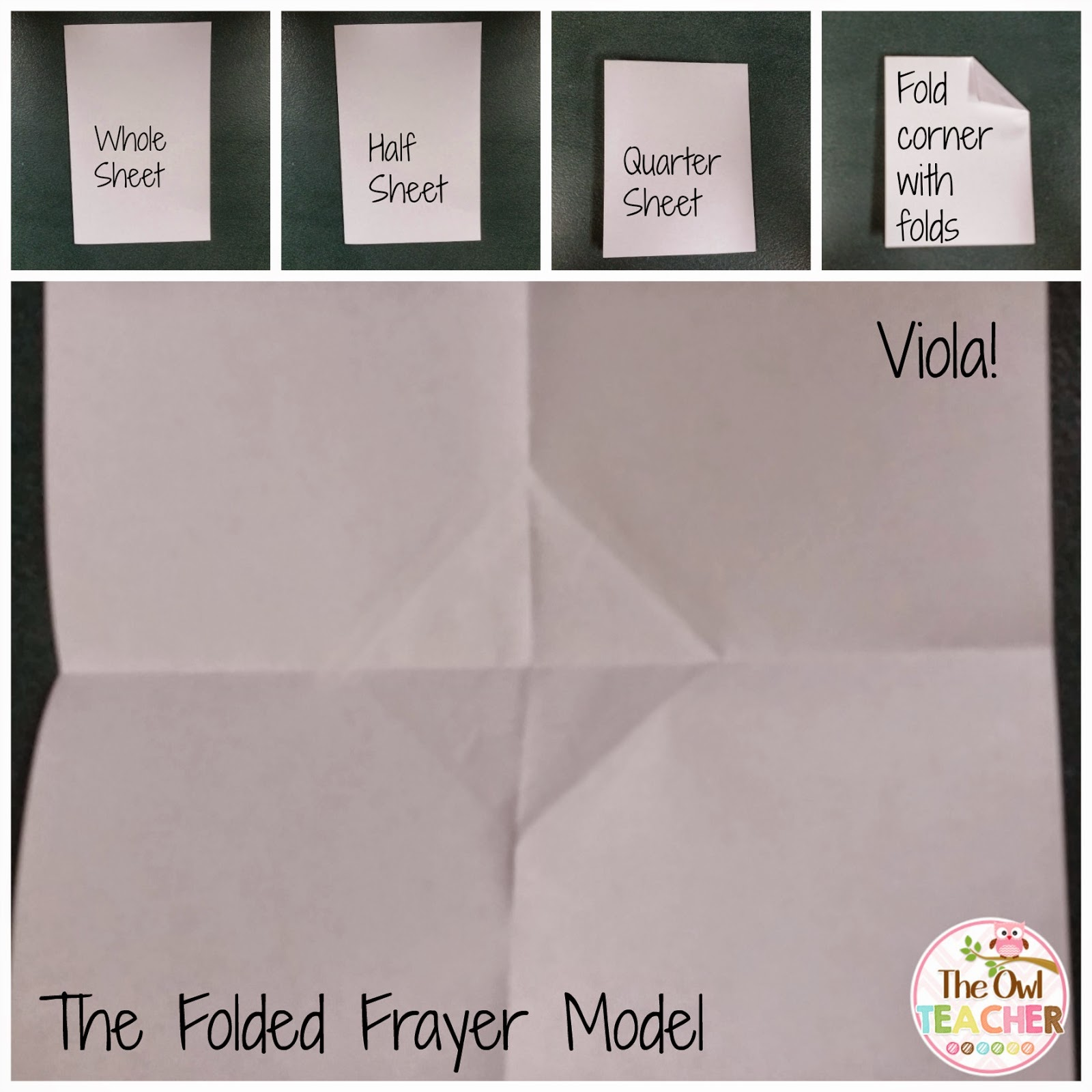 foldable frayer model