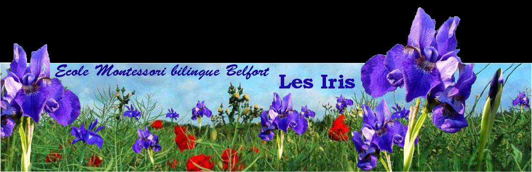 Ecole bilingue anglais Montessori Les Iris Belfort