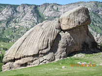 Turtle Rock in Terelj National Park, Mongolia