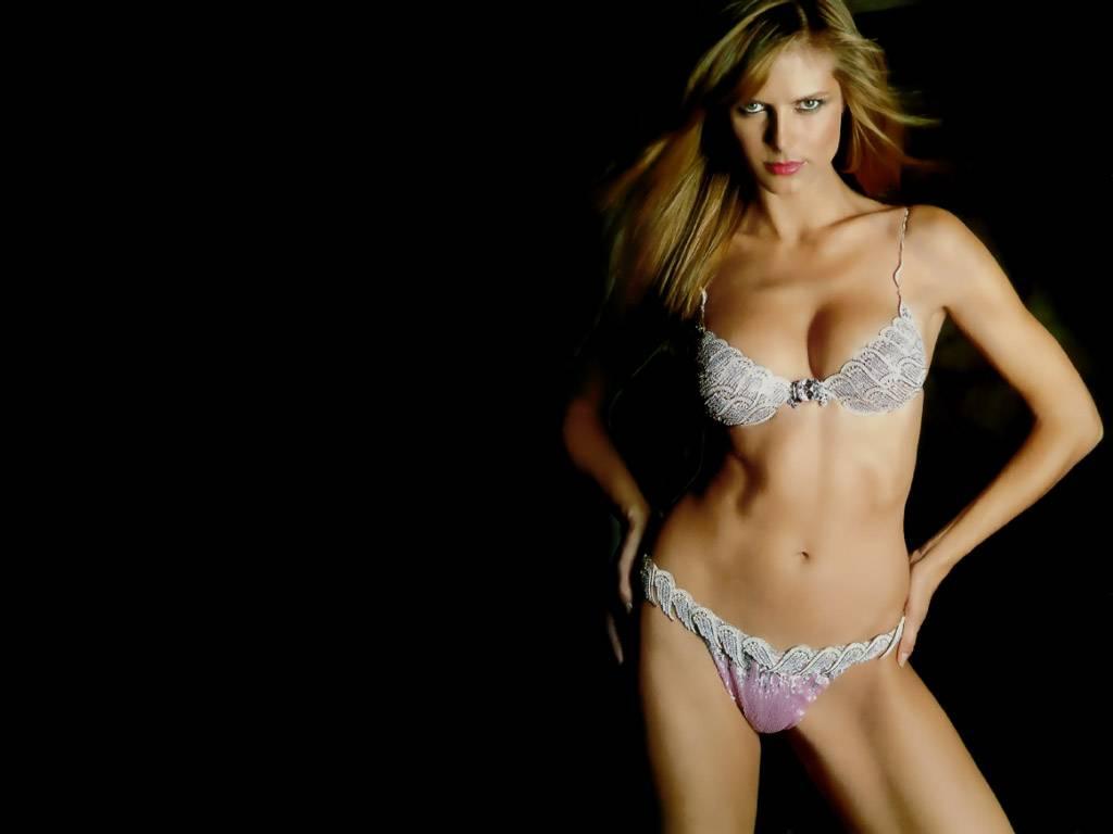 http://3.bp.blogspot.com/-xsyfkBvMmKY/TwiYE4K9RCI/AAAAAAAAEC4/uH4MRwbyU9s/s1600/Heidi_Klum_desktop.JPG