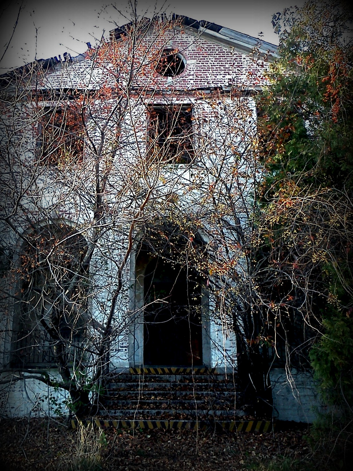 abandoned, building, grown over, trees, coast guard