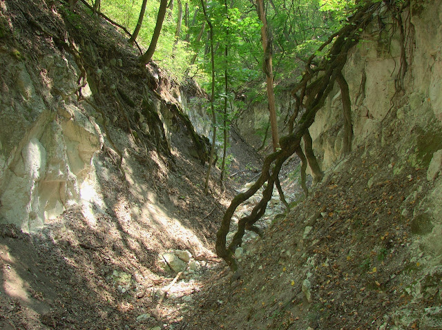 Средняя часть каньона
