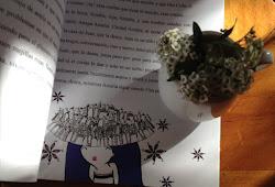 Minúsculas. Un libro para regalar...