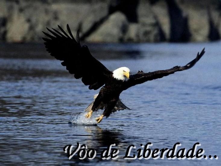Vôo de Liberdade.