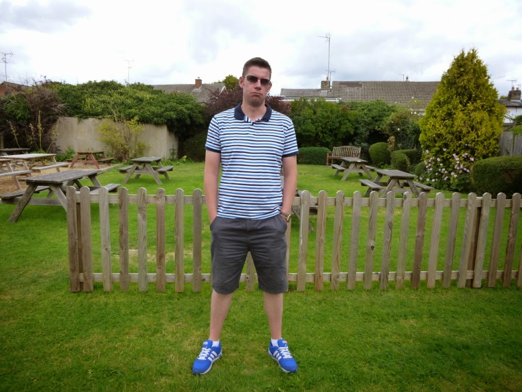 In the beer garden of The Dolphin pub in Melbourn (August 2014)