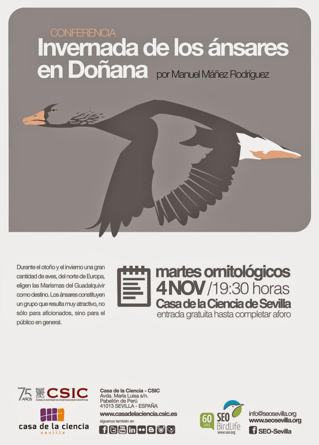 """Conferencia ornitológica organizada por el Grupo Local SEO-Sevilla de SEO/BirdLife en el museo Casa de la Ciencia de Sevilla. """"Invernada de los ánsares en Doñana"""". Por Manuel Máñez Rodríguez."""
