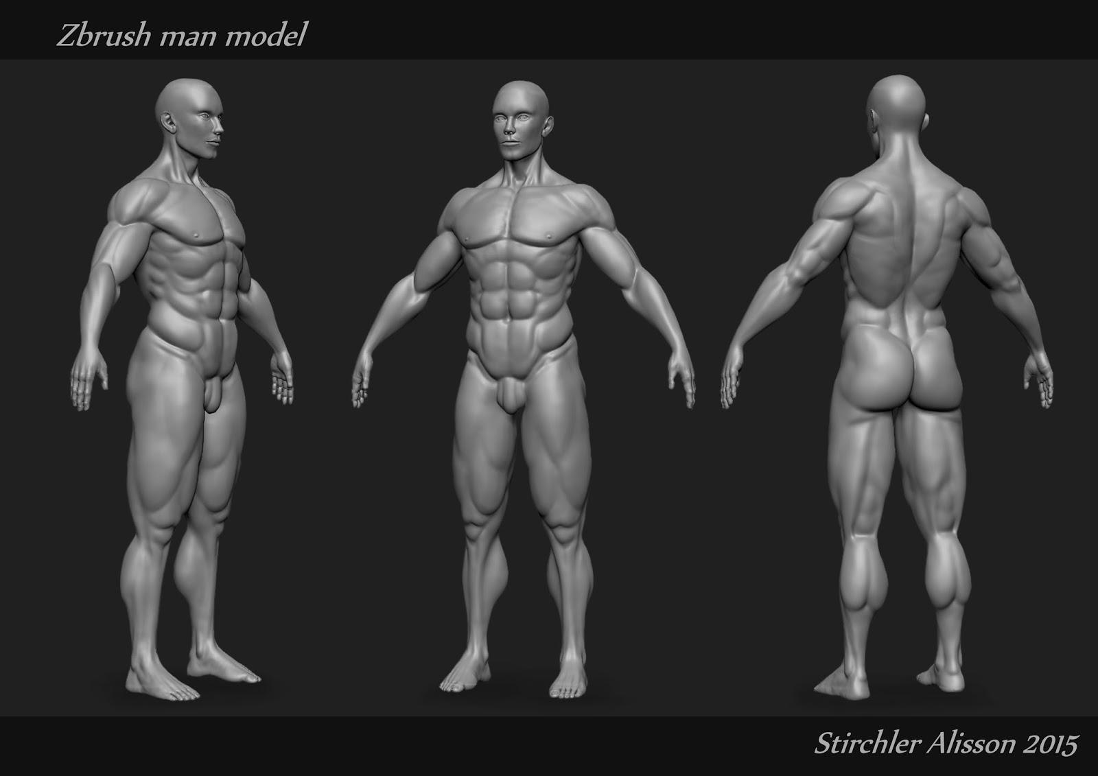Stirchler Alisson Environment Artist Portfolio: Zbrush Man Anatomy