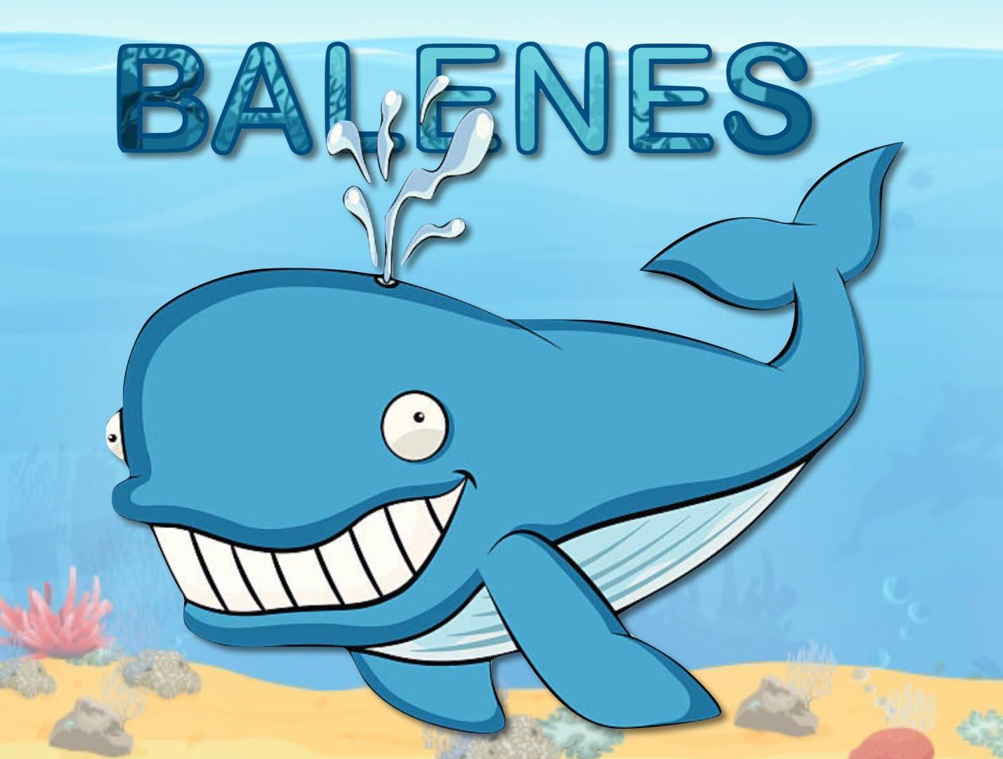 EI4B BALENES