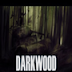 Darkwood Download Free Full Version Game